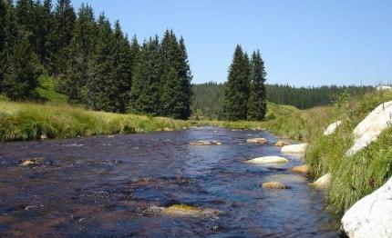 Nationaal-Park-Sumava in Tsjechië