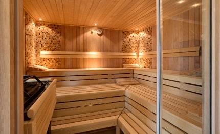 Hotel Edelfinger Hof sauna